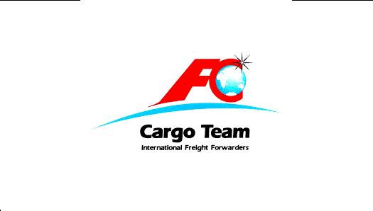 FC CARGO TEAM SRL